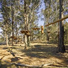 sydney the hills treetops sydney western sydney parklands search results