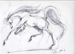 76 best horses images on pinterest horses horse art and horse