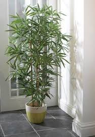 artificial decorative trees for the home decorating your house with silk plants