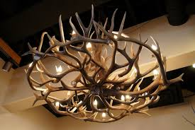 Home Interiors Deer Picture by Chic Deer Antler Chandelier About Home Interior Design Ideas With