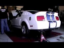 2007 ford mustang gt500 2007 ford mustang shelby gt500