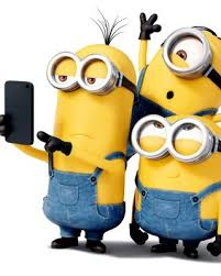 minions comedy movie wallpapers 1071 best despicable me 1 2 3 and the minions images on