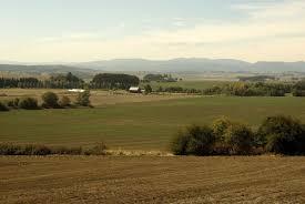 Valley Oregon Willamette Valley