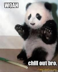 Chill Out Bro Meme - woah chill out bro make me laugh pinterest bro