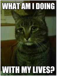 Depressed Cat Meme - depressed cat memes hwz003379 easylife online com