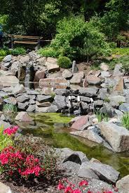 free images plant lawn flower pond stream spring backyard