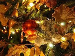 astounding tree ornaments ideas decorating design