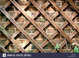 a wooden trellis against a brick wall stock photo royalty free