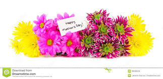mother u0027s day flower border stock photo image 39338534