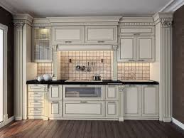 kitchen cabinet pictures ideas kitchen cabinets ideas illionis home