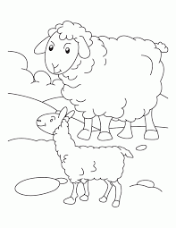 lamb coloring kids coloring