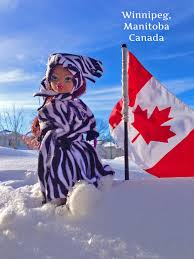 Manitoba Flag Winter In Winnipeg Hey There Delilah