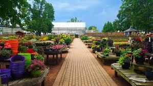 the planter u0027s palette plants for garden artistry