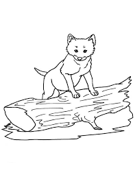 cute wolf coloring download u0026 print coloring