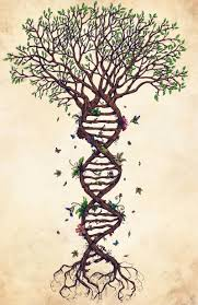 image result for tree of life by dna tattoos pinterest life