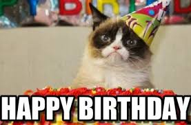 Funny Cat Birthday Meme - tag for happy birthday with cats funny happy birthday cat memes