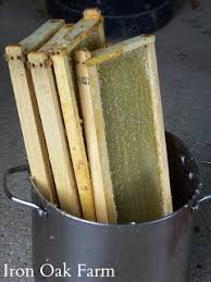 Harvesting Honey From A Top Bar Hive Extracting Honey Without An Extractor Keeping Backyard Bees