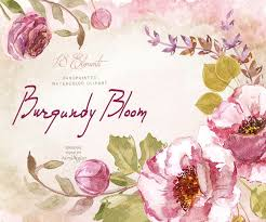 Shabby Flowers Burgundy Bloom Watercolor Clipart Shabby Flowers Digital