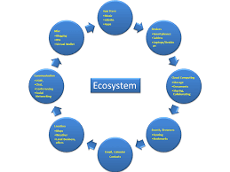 ict in education as an ecosystem elearning leadership