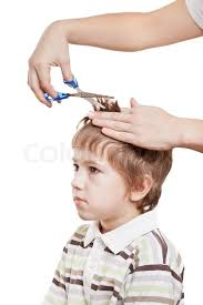cutting boy hair with scissors woman hand holding scissors cutting child hair stock photo