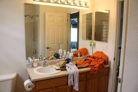 Barn Board Bathroom Hook U0027em