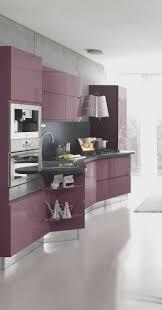 purple kitchens kitchen creative purple kitchen design luxury home design luxury