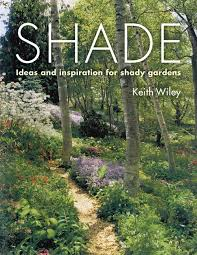 Garden Shade Ideas Shade Ideas And Inspiration For Shady Gardens From Timber Press