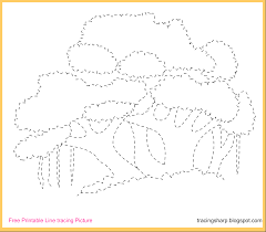 free tracing line printable banyan tree tracing picture