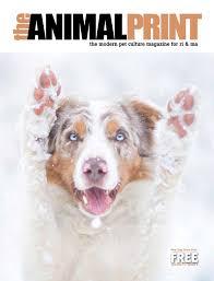 australian shepherd ipod 5 case new dog issue by animalprint issuu