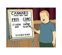 Bobby Hill Meme - cannabis pros and cons bobby hill king of the hill weed memes weed