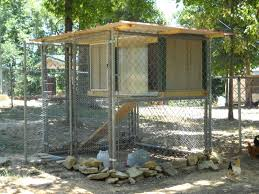 dog pen chicken coop page 2 backyard chickens