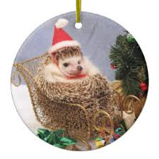 hedgehog ornaments keepsake ornaments zazzle