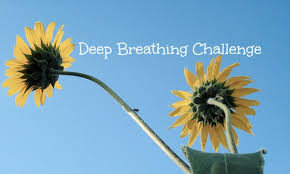 Challenge Breathing Join Me For A Breathing Challenge Groovy Green Living