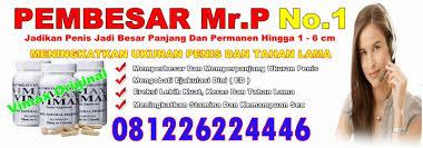vimax palembang 081226224446 jual vimax asli di palembang