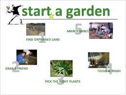 Gardening Tips For Summer - tips u0026 tricks la guerrilla gardening