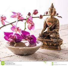 Image Zen Gratuite by Bouddha Pour L U0027attitude De Zen Avec La Pierre Et Les Fleurs Photo