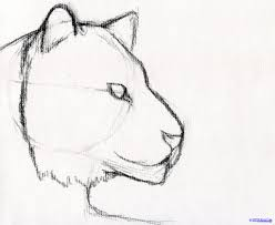 learn pencil sketch learn how to draw pencil sketch pencil art