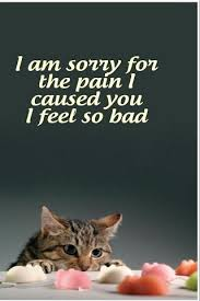 sorry greeting cards free android apps on play