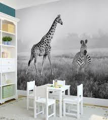 african safari photograph wall art