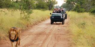 african jeep south africa safari u0026 tours adventures by disney