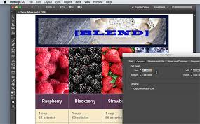 in design adobe indesign for mac