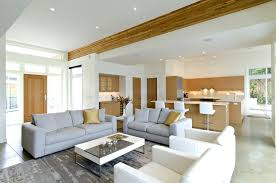 soft gray floor combined with white gray leather sofa plus