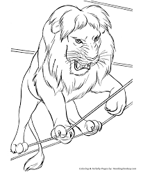 circus lion coloring pages getcoloringpages