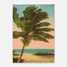 Palm Tree Area Rugs 5x7 Tropical 5x7 Tropical Rugs 5x7 Tropical Area Rugs Indoor
