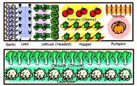 garden technology how to plan your vegetable garden a