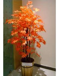 buy artificial maple plant tree in india chhajedgarden