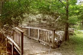 Mead Gardens Summer Camp - ed hineline jr photography walkways country style bridge