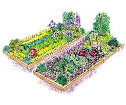 Veg Garden Layout Vegetable Garden Plans