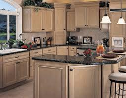 Remodeling Kitchen Ideas Kitchen Design Gallery Photos Contemporary Kitchens Kitchen Design