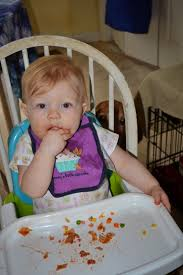 table food ideas for 9 month old finger foods for an 11 month old meal ideas